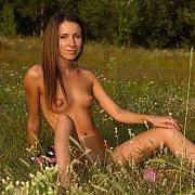 Slender Nude Erotic Brunette Sitting In A Field
