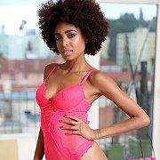 Pink Teddy Lingerie On A Sexy Ebony Model Posing