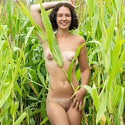 Naked Tan Lines Coed Girl With Small Breasts In A Corn Field