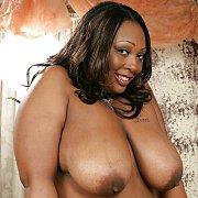 Big & Busty Black Girls