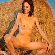 Slim Nude Brunette By A Hay Role