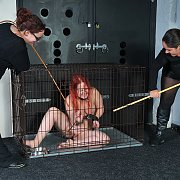 Redheaded Tiny Caged In Electro BDSM