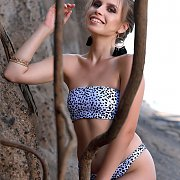 Animal Print Bikini Strip Outdoors